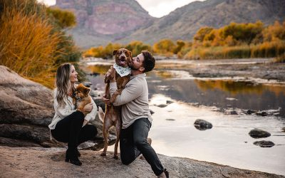 How to Include Your Dog in Your Photos